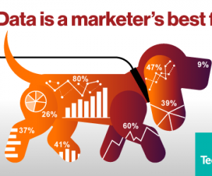 marketing data is a marketer's best friend