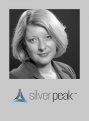 Tech marketer Talks Silver Peak